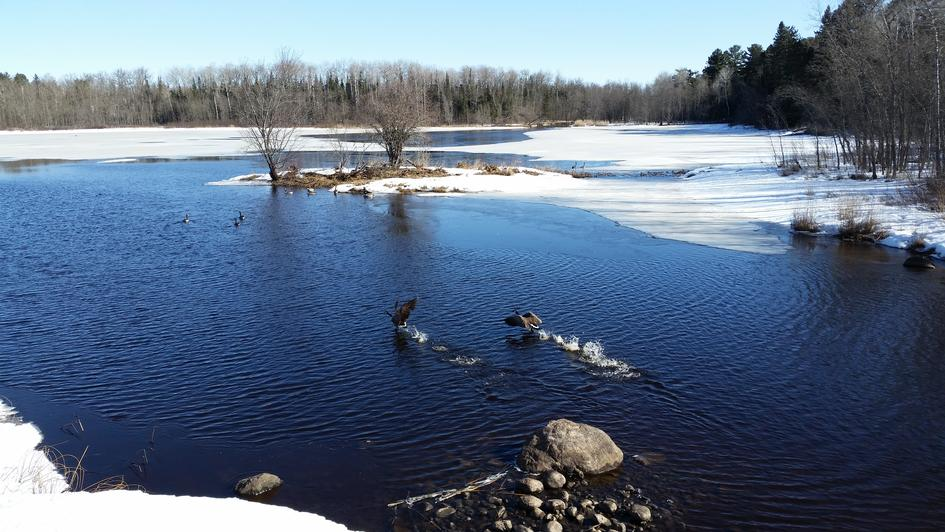 Spring Flight on the Embarrass River south of Biwabik on March 29