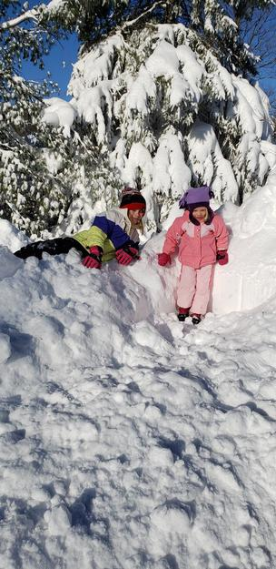 Grandma's Little Helpers remove the snow