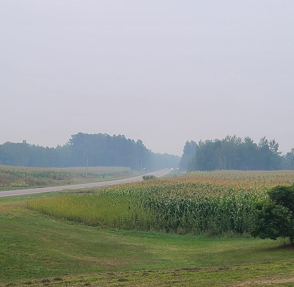 Smoke lingers over the corn in Jacobson