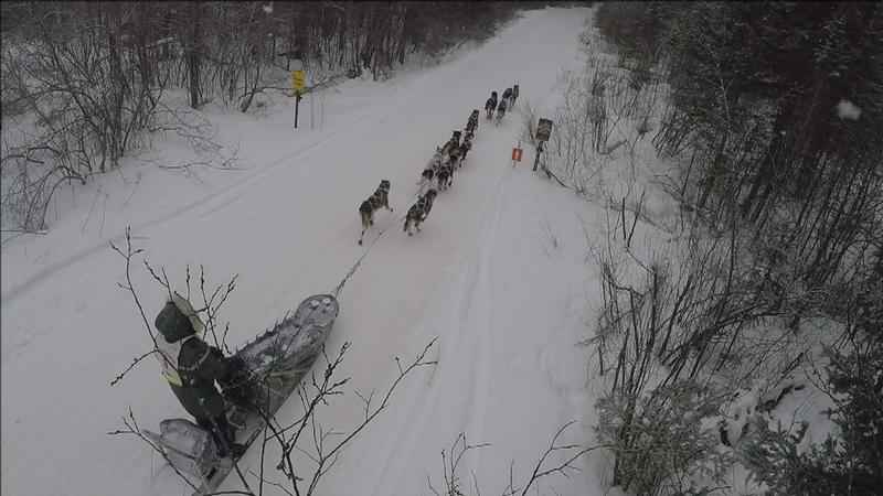 A musher passes on the Honeymoon Trail north of Lutsen Tuesday morning.