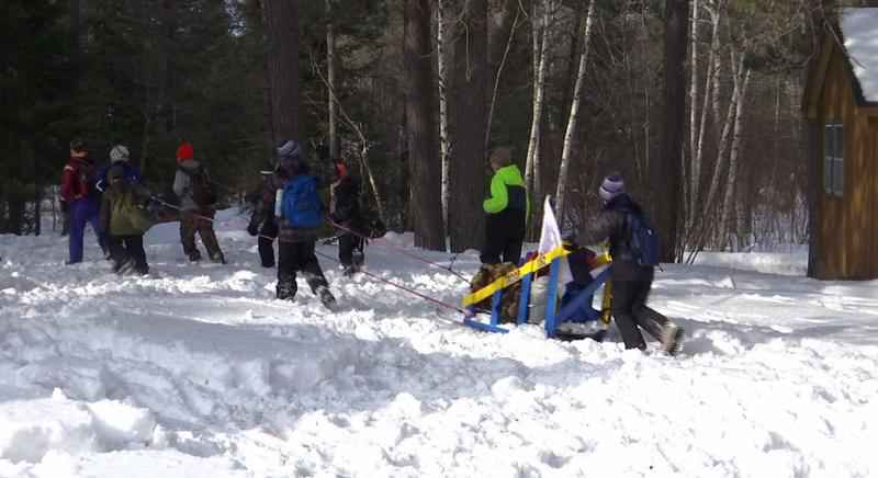 The annual Boy Scouts Beargrease Derby was held on Saturday.