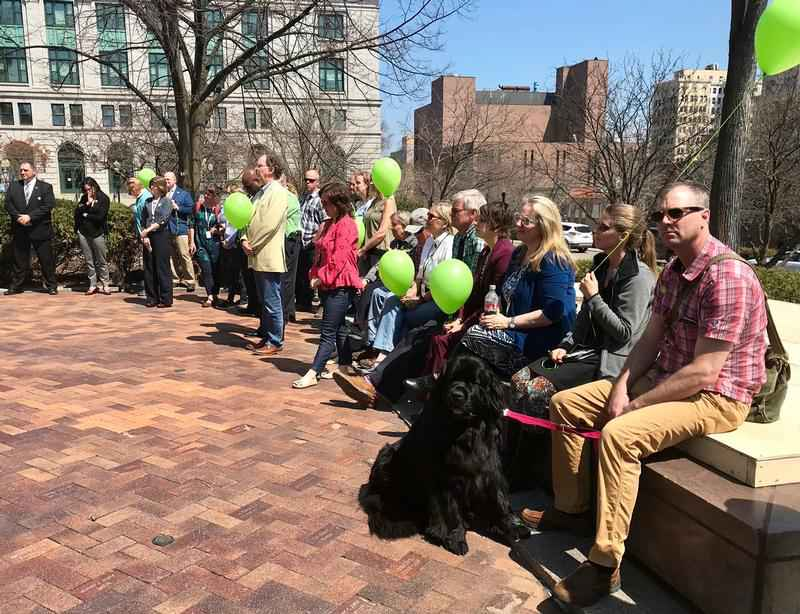 People gathered outside Duluth City Hall with green balloons to kick off Mental Health Awareness Month.