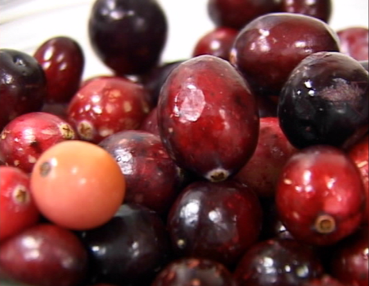 Wisconsin Cranberry, Tart Cherry Production Declines