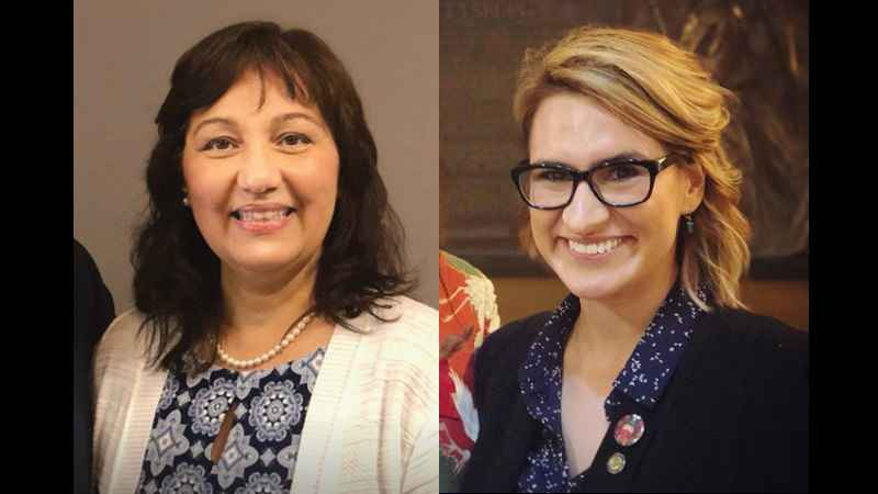 Donna Bergstrom and Peggy Flanagan are both running for Lt. Governor, and both have Ojibwe heritage.