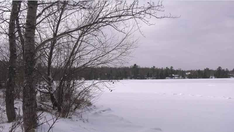 A passer-by rescued two children who fell through the ice in a frozen pond on Fond du Lac's south side Sunday.