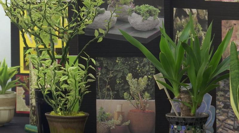 Expert growers offered advice on a variety of gardening topics at the Spring Gardening Extravaganza.
