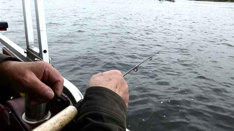 New Fishing Season, Regulations Take Effect in Michigan