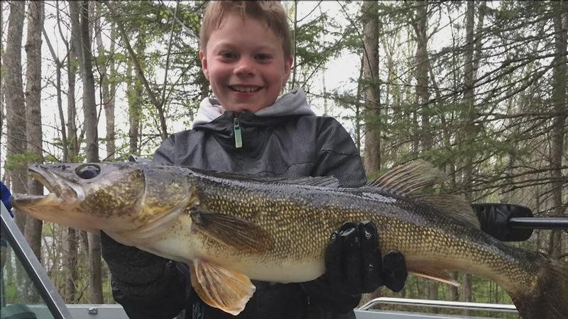 Kaden Amundson with a 29.5 inch walleye caught on Lake Vermilion