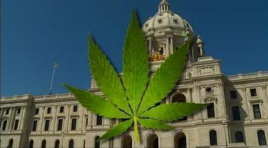 Chronic pain, macular degeneration will be added to approved treatments for medical cannabis, according to Michigan Dept. of Health.