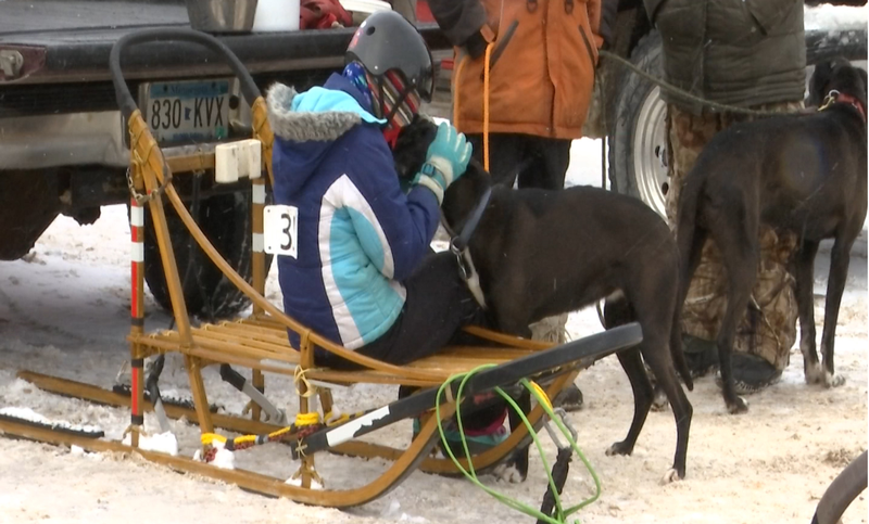 One musher embracing their dog before the big race.