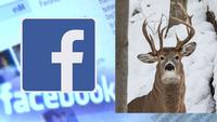 Former Lawmaker Takes Picture of Rare 3-antler Deer
