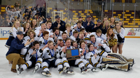 After a one year hiatus, Hermantown reclaimed the Section 7A boy's hockey title after defeating Duluth Denfeld 6-0 Wednesday night in the championship game at AMSOIL Arena.